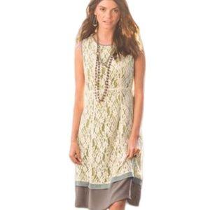 SUNDANCE Orly Overlay Lace Sheath Dress Cream